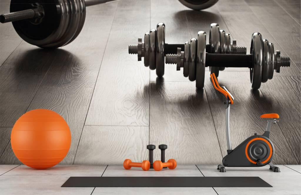 Fitness - Haltères et poids - Chambre d'hobby 1
