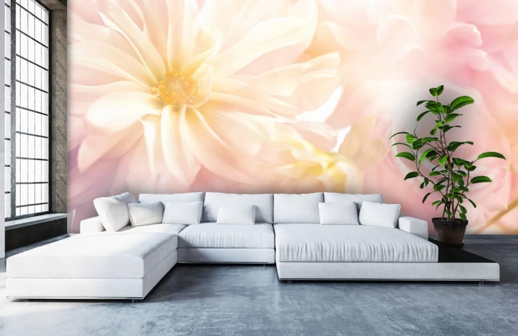 Champs fleuris - Fleurs claires - Chambre à coucher 5