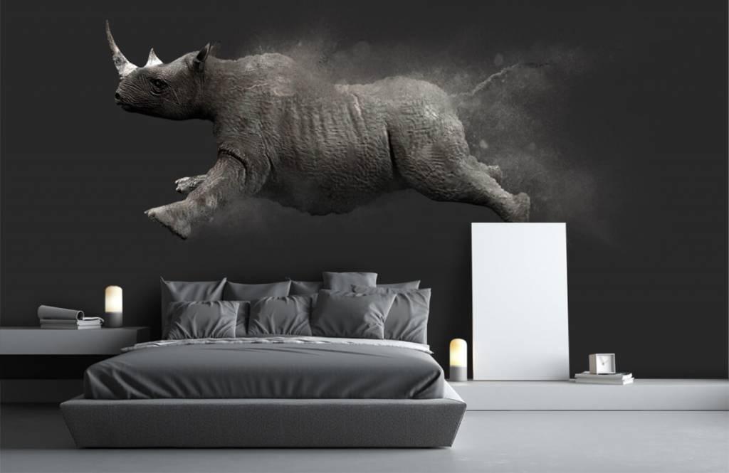 Autre - Rhinocéros sauteur - Chambre d'adolescent 1