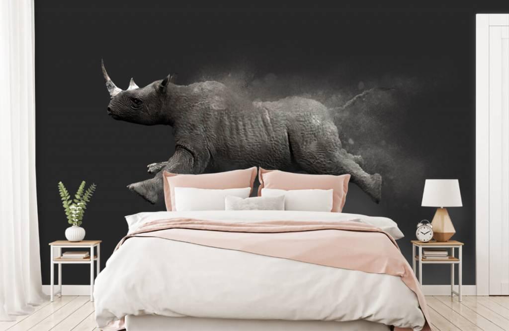 Autre - Rhinocéros sauteur - Chambre d'adolescent 2