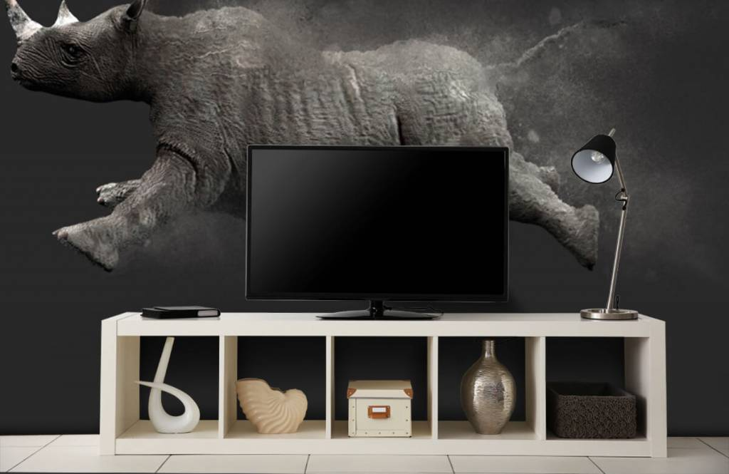 Autre - Rhinocéros sauteur - Chambre d'adolescent 3