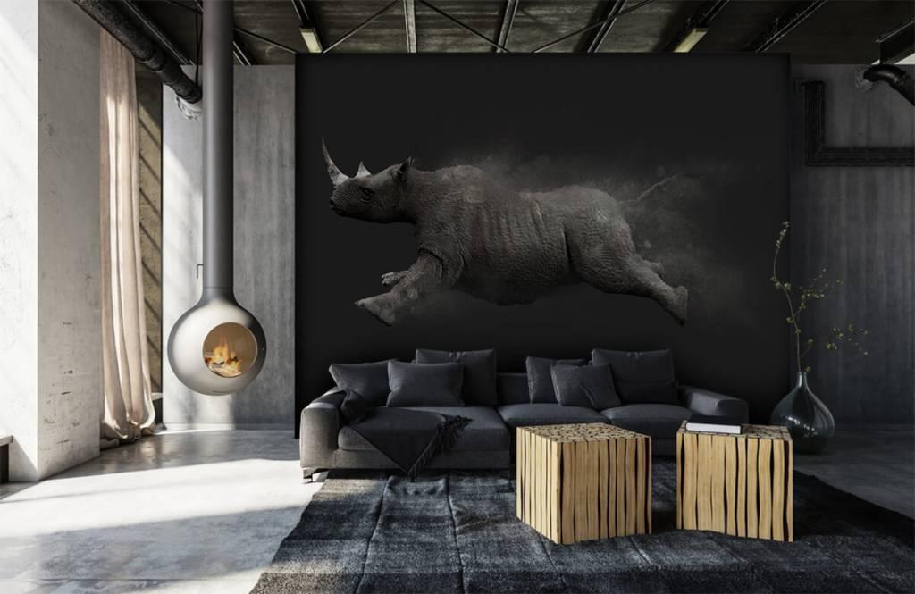 Autre - Rhinocéros sauteur - Chambre d'adolescent 5