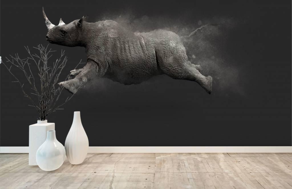 Autre - Rhinocéros sauteur - Chambre d'adolescent 7