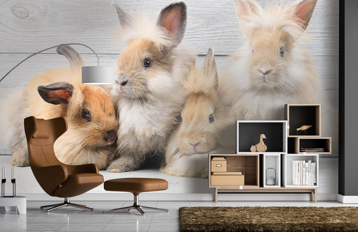 Wallpaper Petits lapins 7
