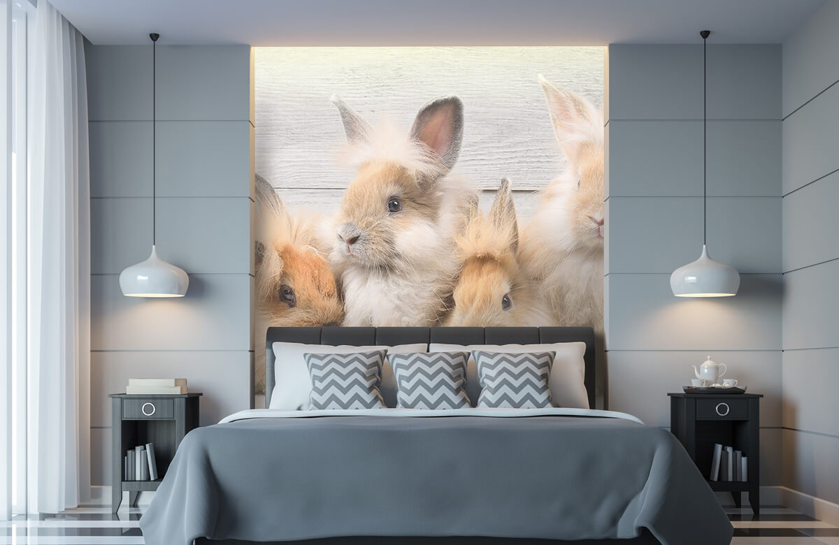 Wallpaper Petits lapins 11
