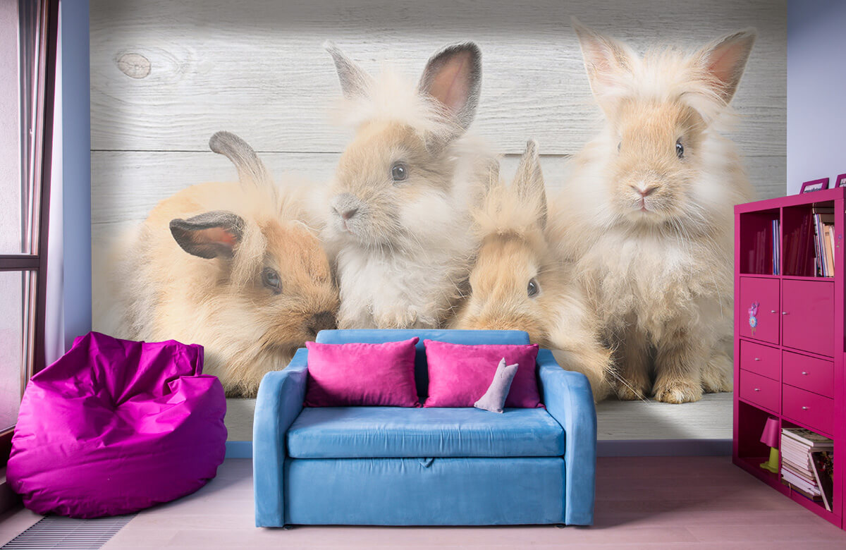 Wallpaper Petits lapins 1