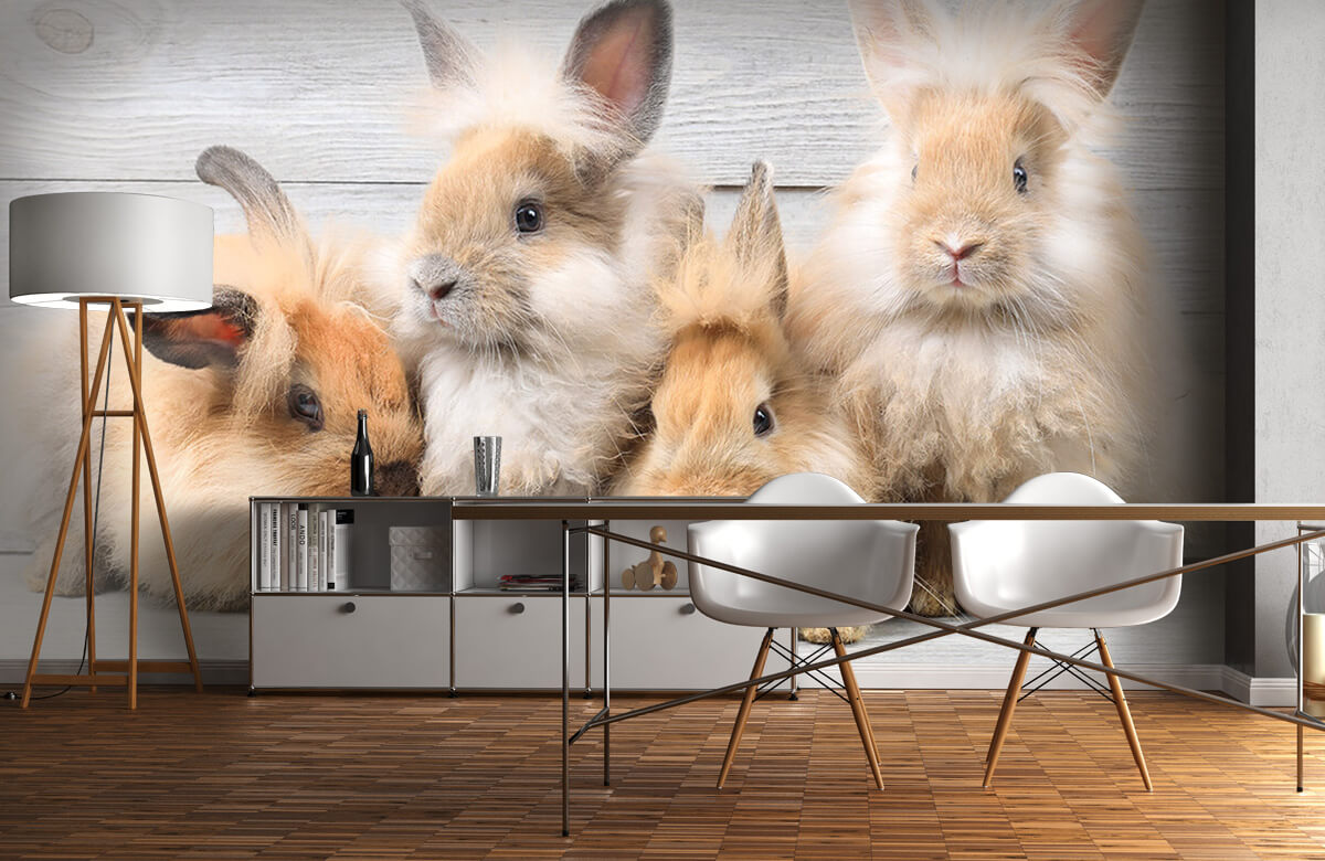 Wallpaper Petits lapins 10