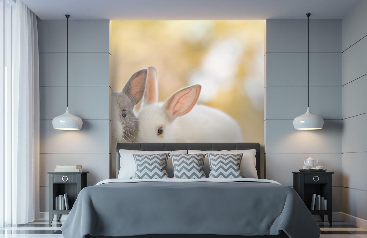 Wallpaper Gros plan sur des lapins 11