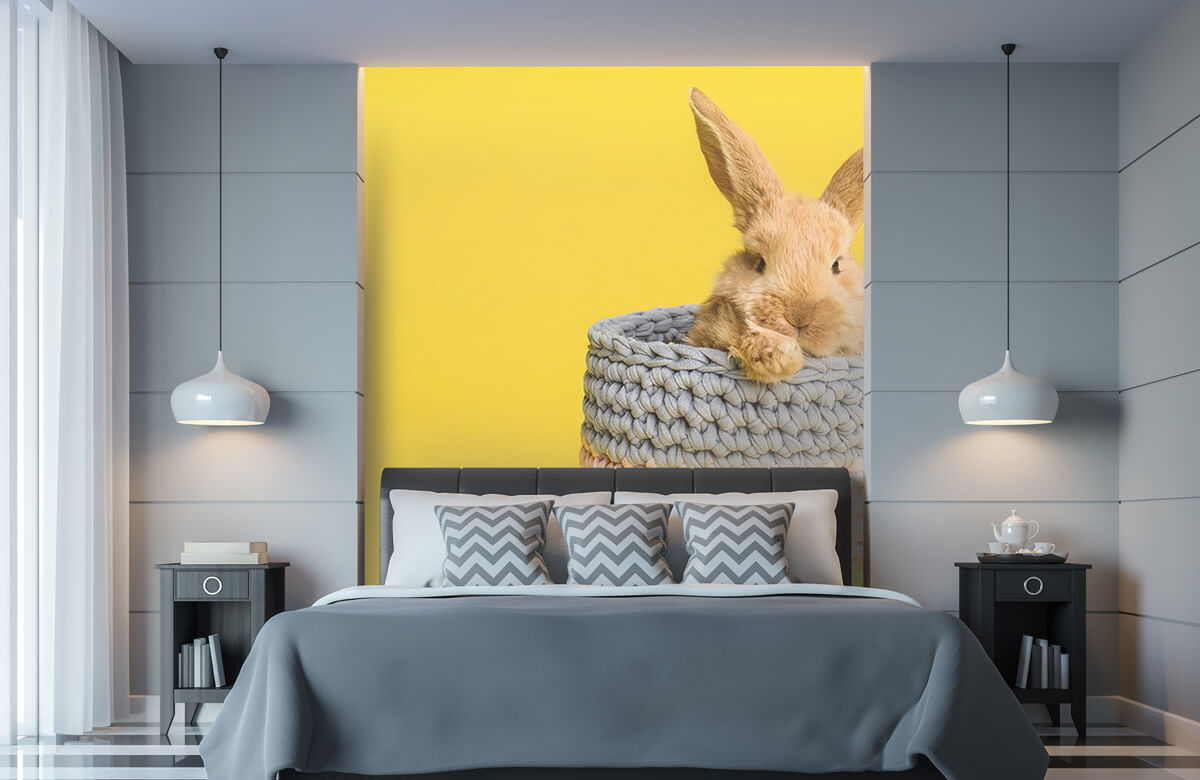 Wallpaper Lapin dans un panier 11
