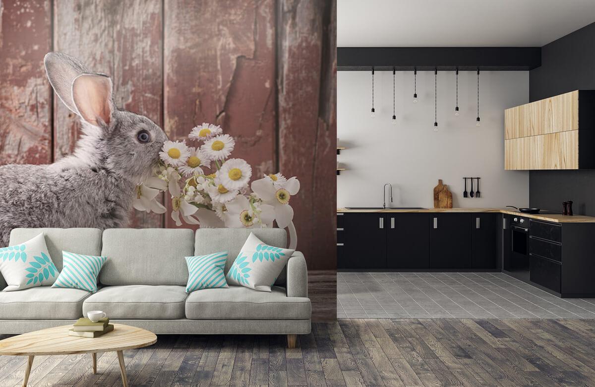 Wallpaper Lapin avec des marguerites 9