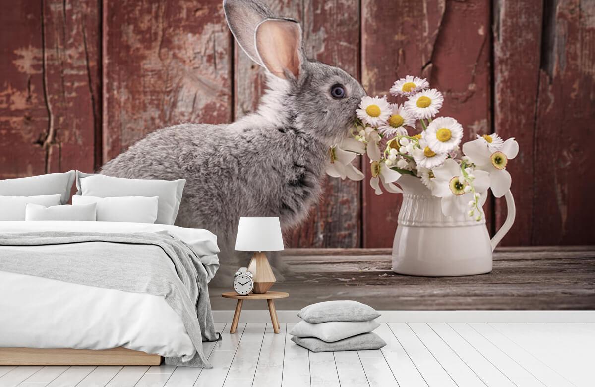 Wallpaper Lapin avec des marguerites 2