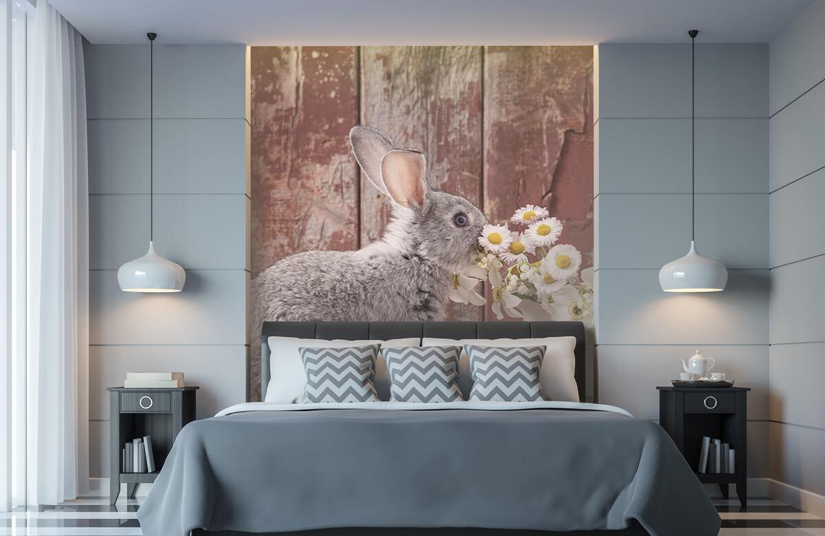 Wallpaper Lapin avec des marguerites 10