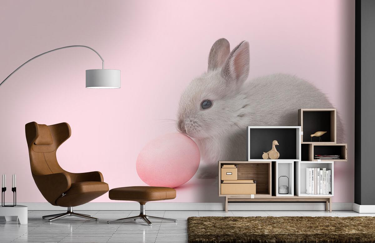 Wallpaper Lapin avec un œuf 8
