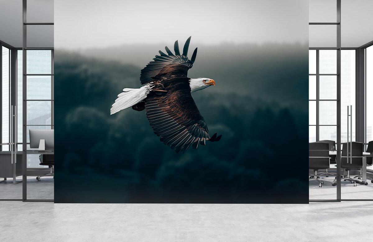 animaux Aigle volant 4