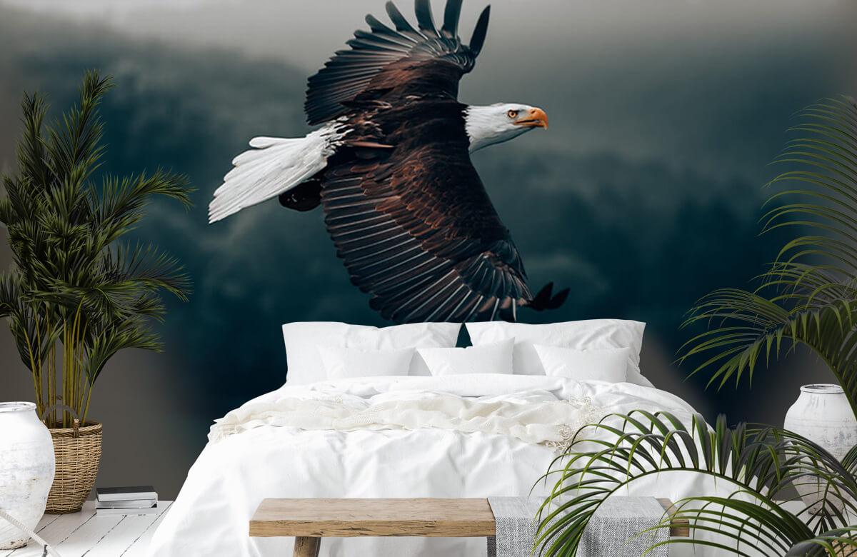 animaux Aigle volant 2