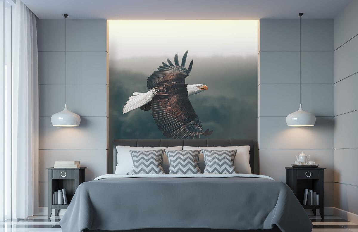 animaux Aigle volant 5
