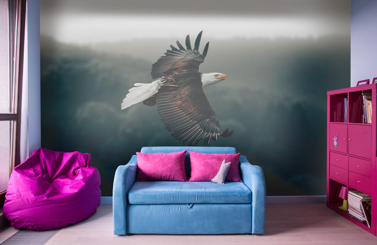 animaux Aigle volant 11