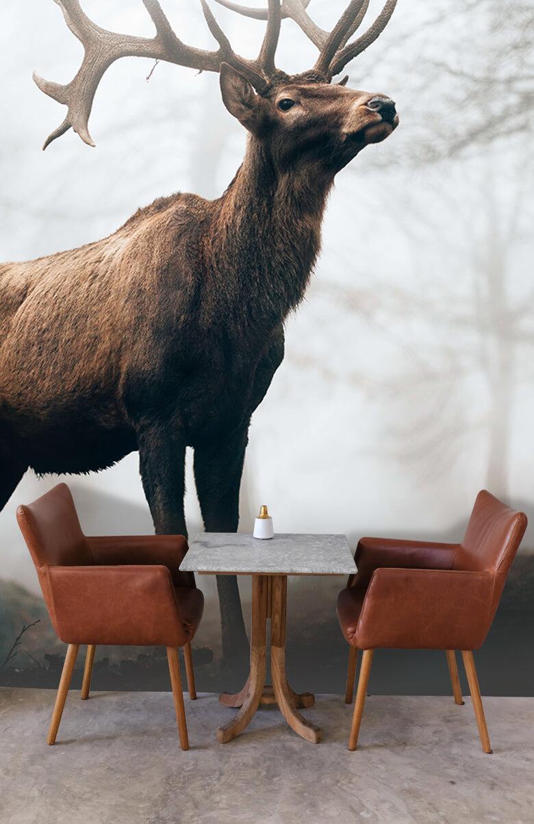 animaux Des rennes dans le brouillard 5