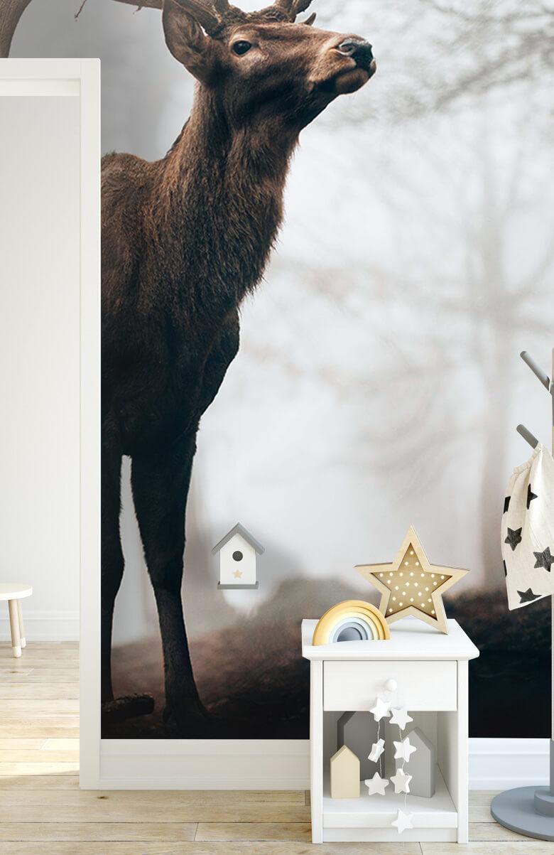 animaux Des rennes dans le brouillard 10