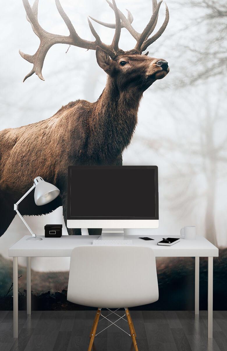 animaux Des rennes dans le brouillard 2