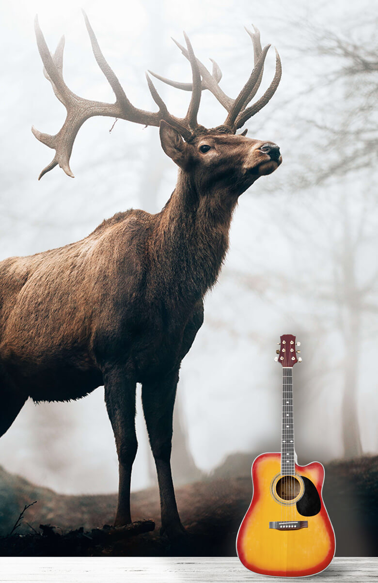 animaux Des rennes dans le brouillard 3