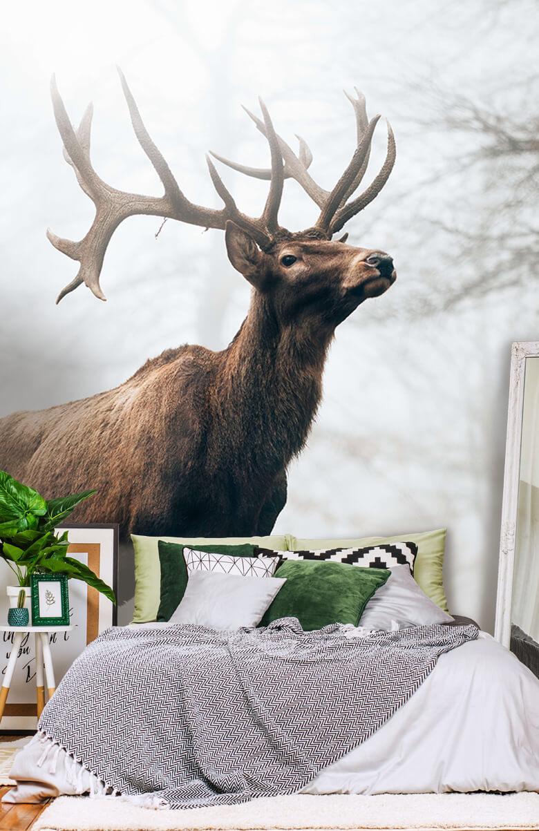 animaux Des rennes dans le brouillard 1