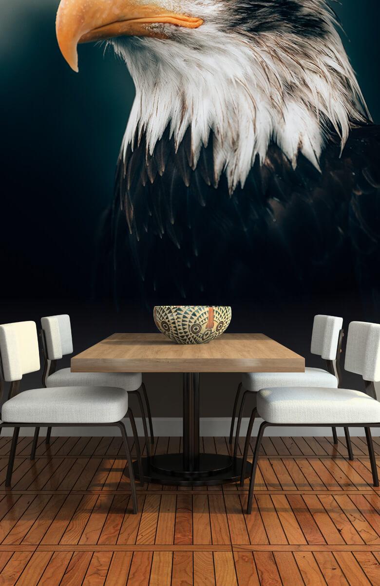 animaux Gros plan sur l'aigle marin 9