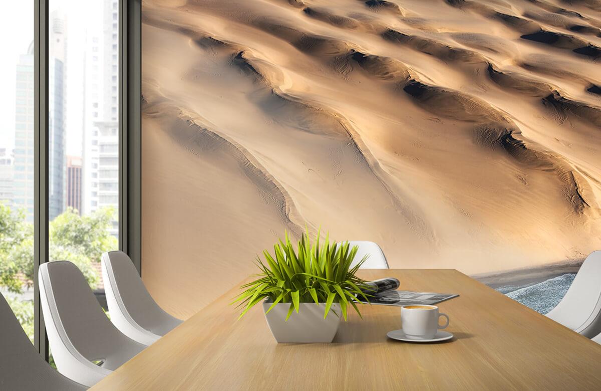 Namib desert 4