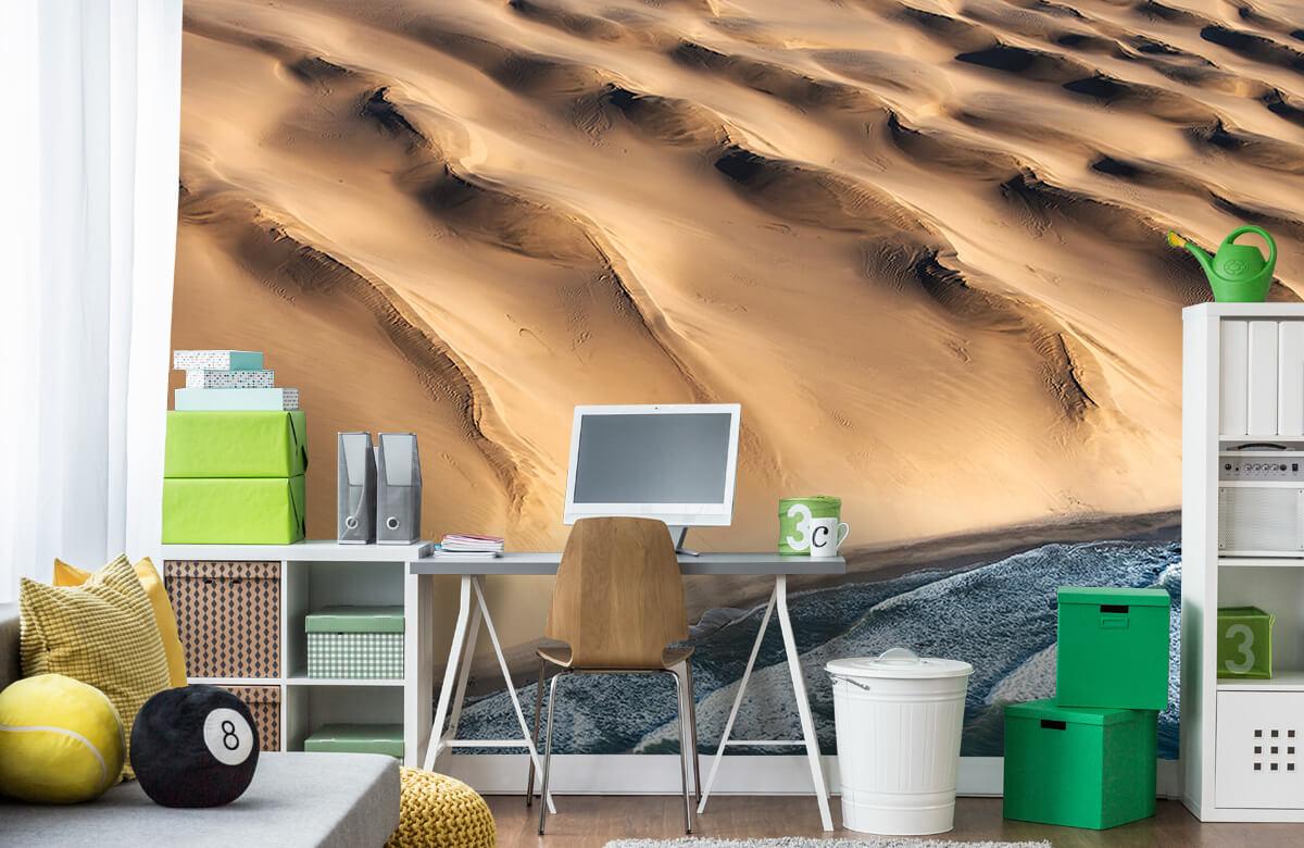 Namib desert 10