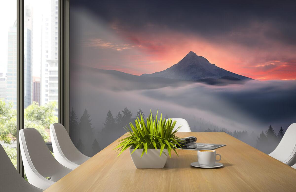Through the Window 4