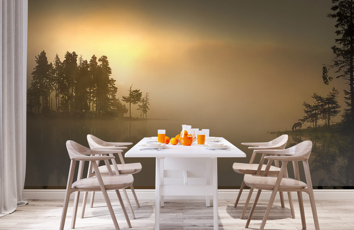 Island in the fog 2