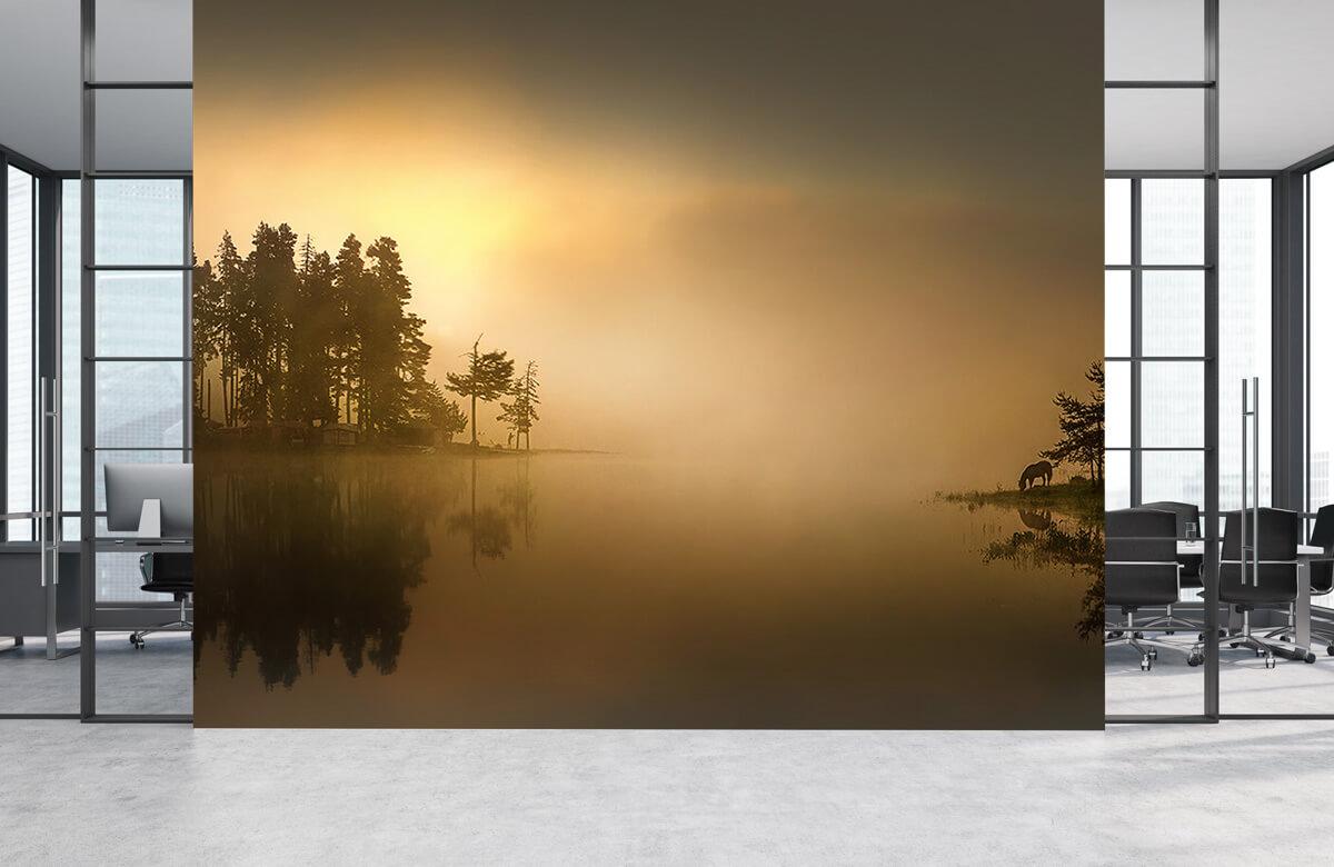 Island in the fog 5