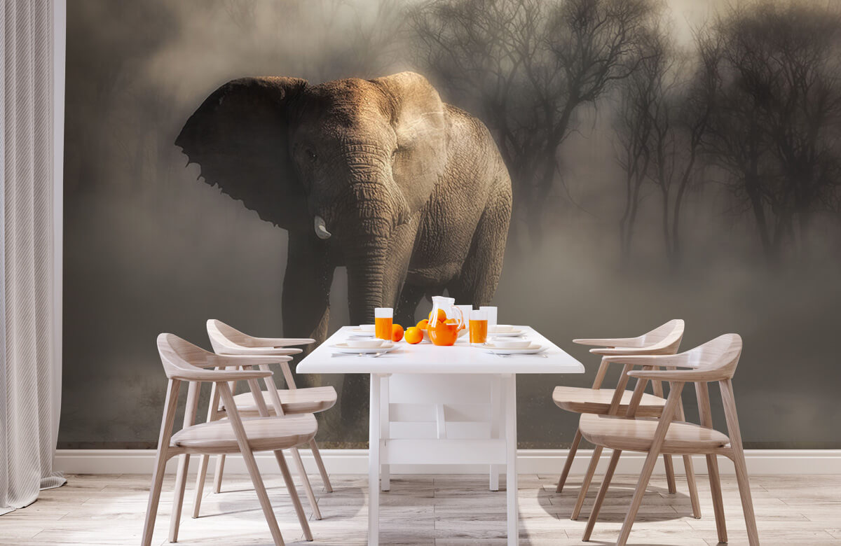 An elephant drinking water 4