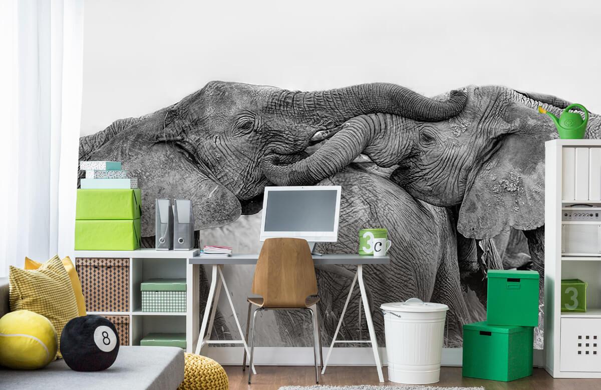 Elephant Playing 2