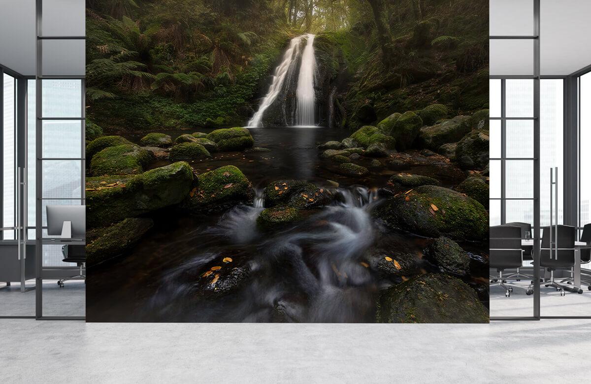 A Graceful Waterfall 5