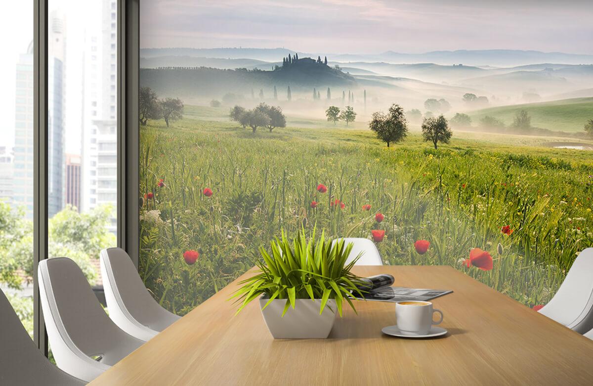 Landscape Tuscan spring 5