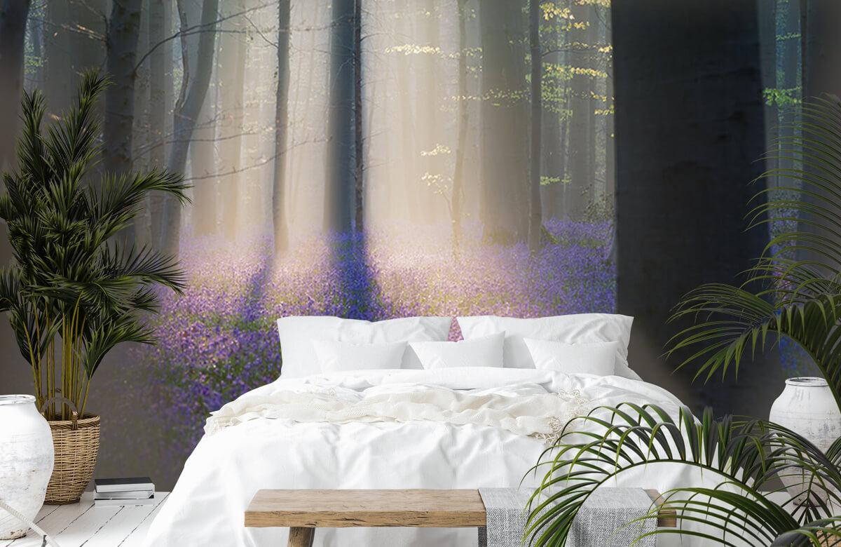 Landscape Velvet Light 5