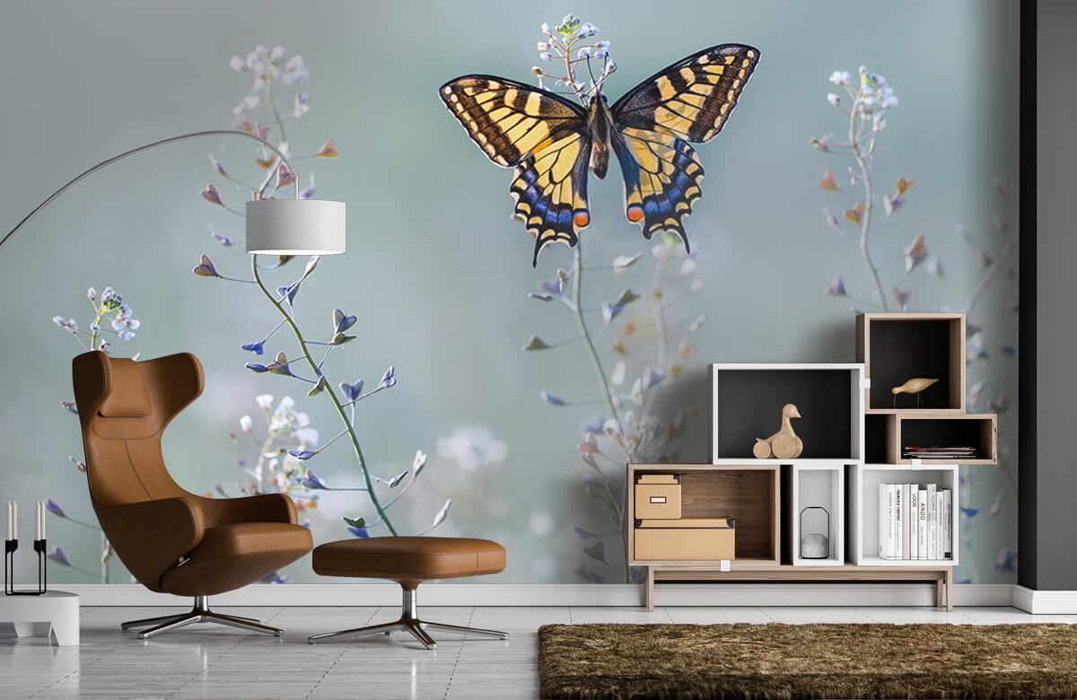 Macro Swallowtail beauty 5