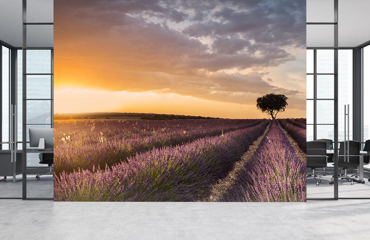 Landscape Destination lavender 6
