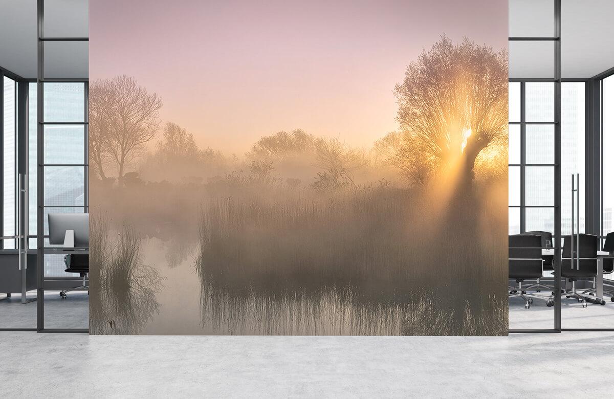 Landscape Silence morning 5