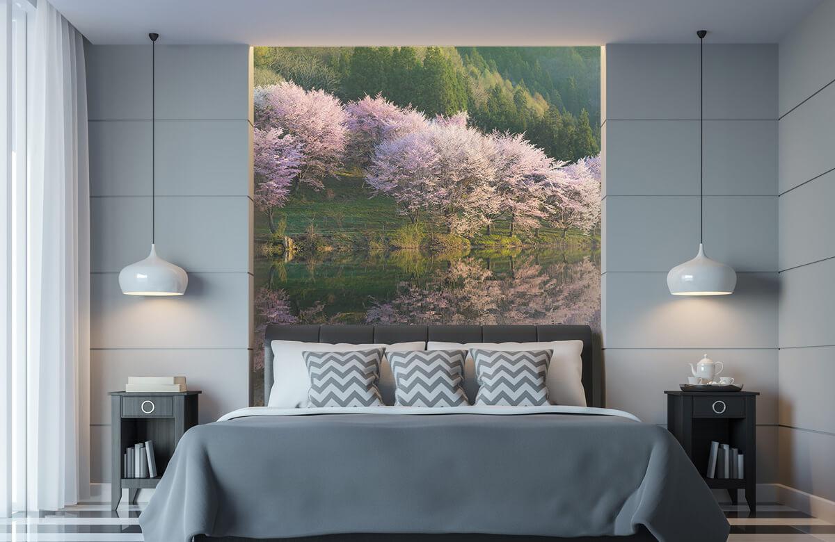 Landscape Sakura 11