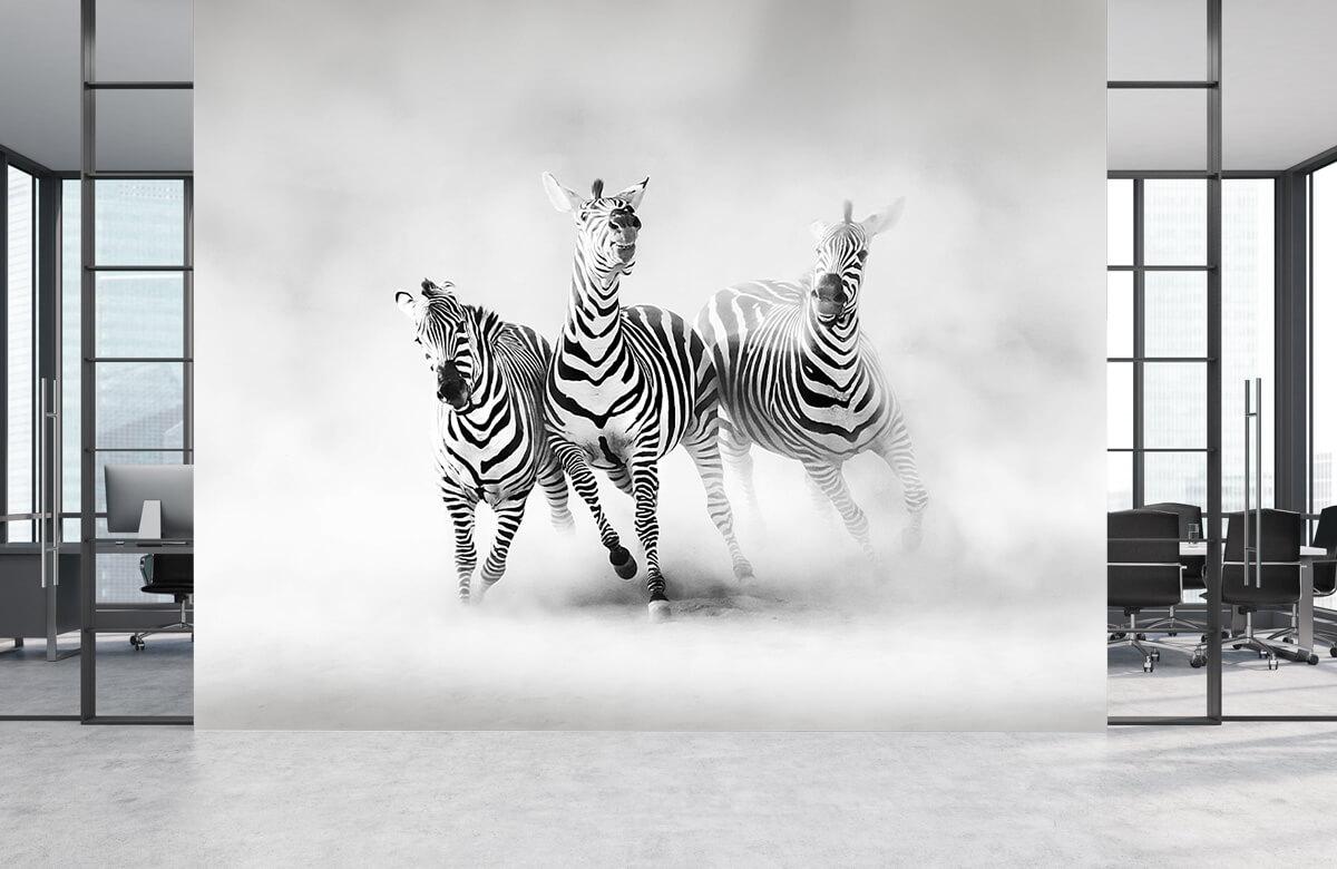 Wilde dieren Zebras 8