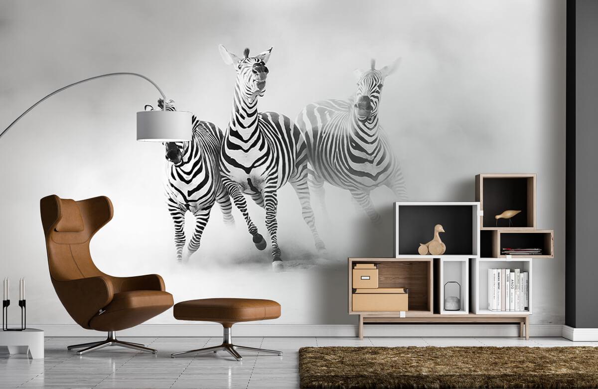 Wilde dieren Zebras 5