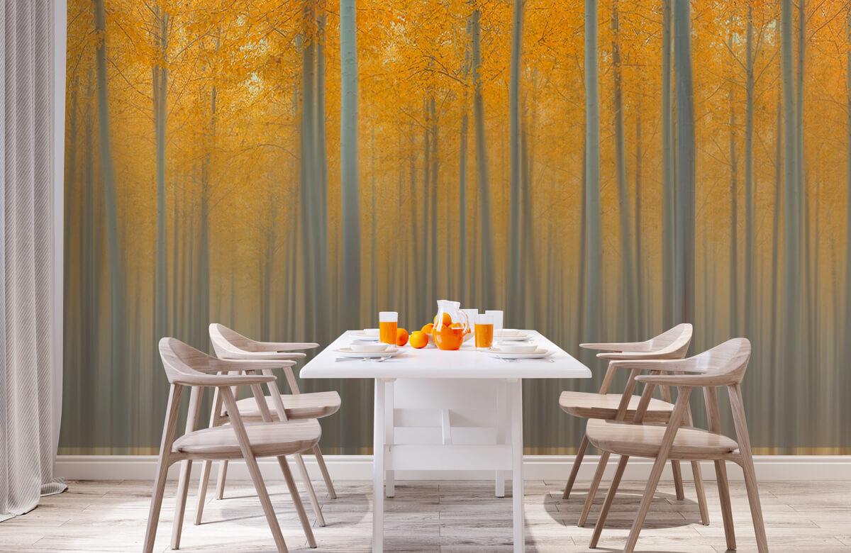 Creative-edit Autumn Light 2