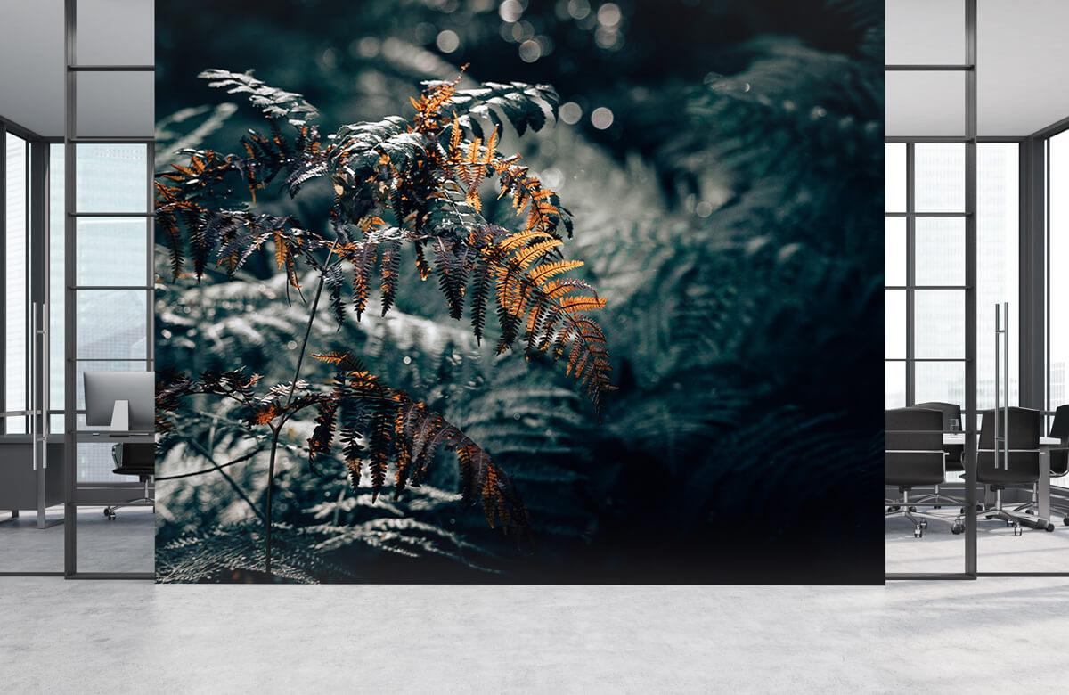 Wallpaper La navigation de plaisance en automne 7